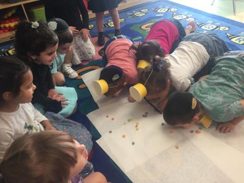 Pre-School In Action Gallery